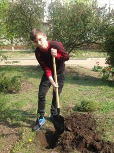 """""""Дерево випускника!"""""""